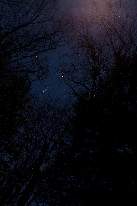 Day 65 - Dippikill Night Sky