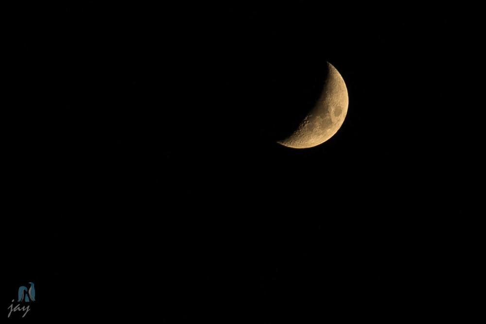 Day 152 - Luna Forming