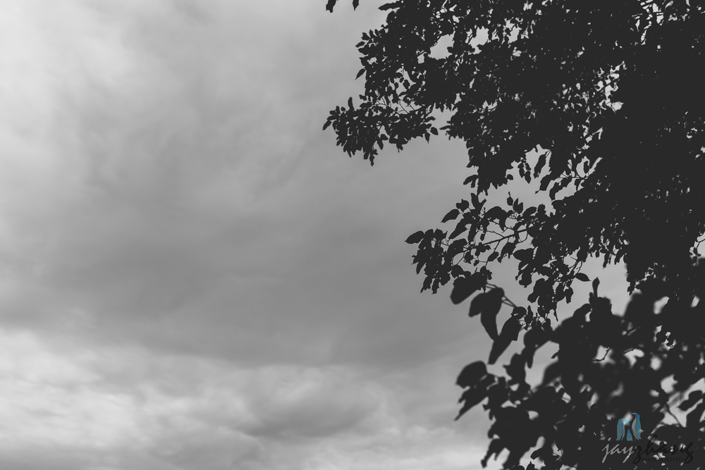 Day 276 - Cloudy Days
