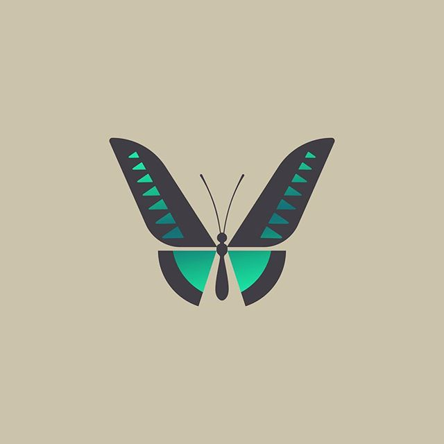 Happy #FreelanceFriday! Here's an unused mark for a branding project I just wrapped up. This is based on the Rajah Brooke's Birdwing, one of my favorite species of butterfly.