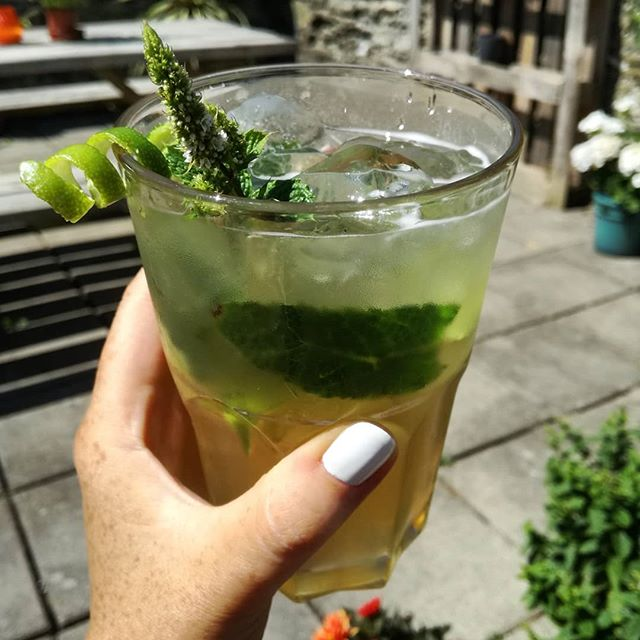 🌴 Ginger Beer Mojito 🌴 #nonalcoholic #cocktail made using our #BlackCastleDrinks #gingerbeer, fresh lime, mint and plenty of ice! Perfection 👌☀🌺