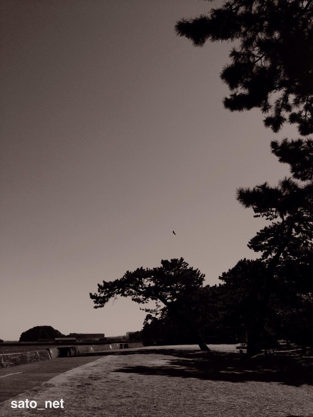 写真 2014-01-20 22 08 31.jpg