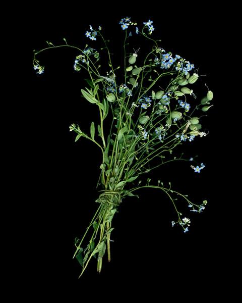 Bouquet 4