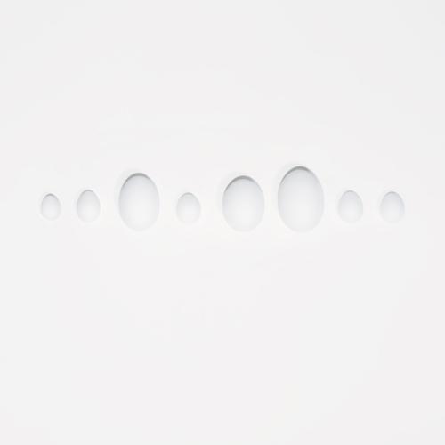 Eggs of 8 Extinct Sea Birds