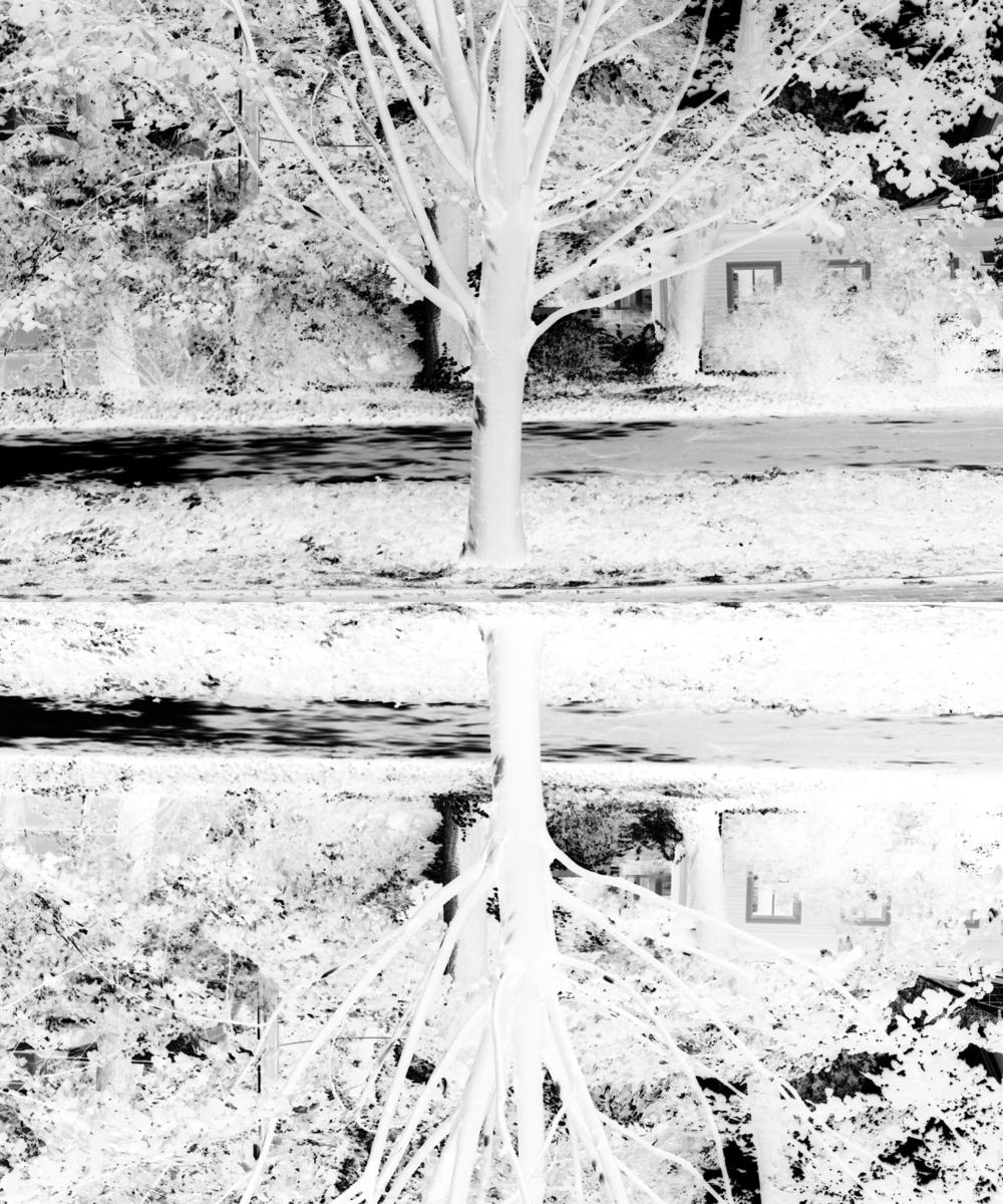 05 mirror site.jpg