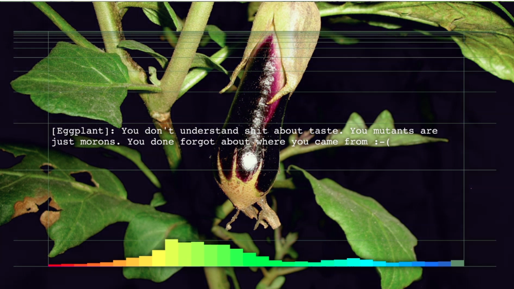 Chen Hangfeng,  Invasive Species: The Vegetables , Video Still, 2015