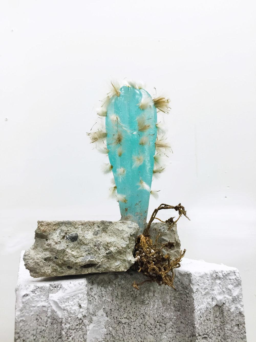 "Tau Lewis, Untitled Plant 3, polyurethane, concrete, cactus root, hawkweed seeds, chalk pastel, 6"" x 5"" x 4"", 2016"