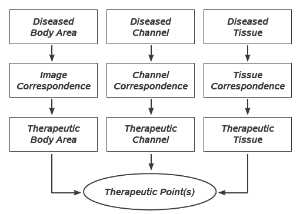 Treatment Flow Chart.png