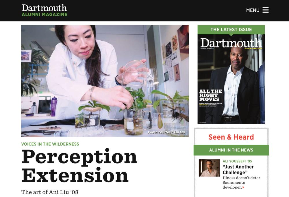 Perception Extension: The Art of Ani Liu - Profile in Dartmouth Alumni MagazineWritten by Kaitlin Bell Barnett