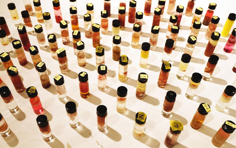 test capsules for look ANI LIU.jpg