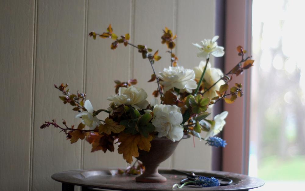 gardenia_6.jpg