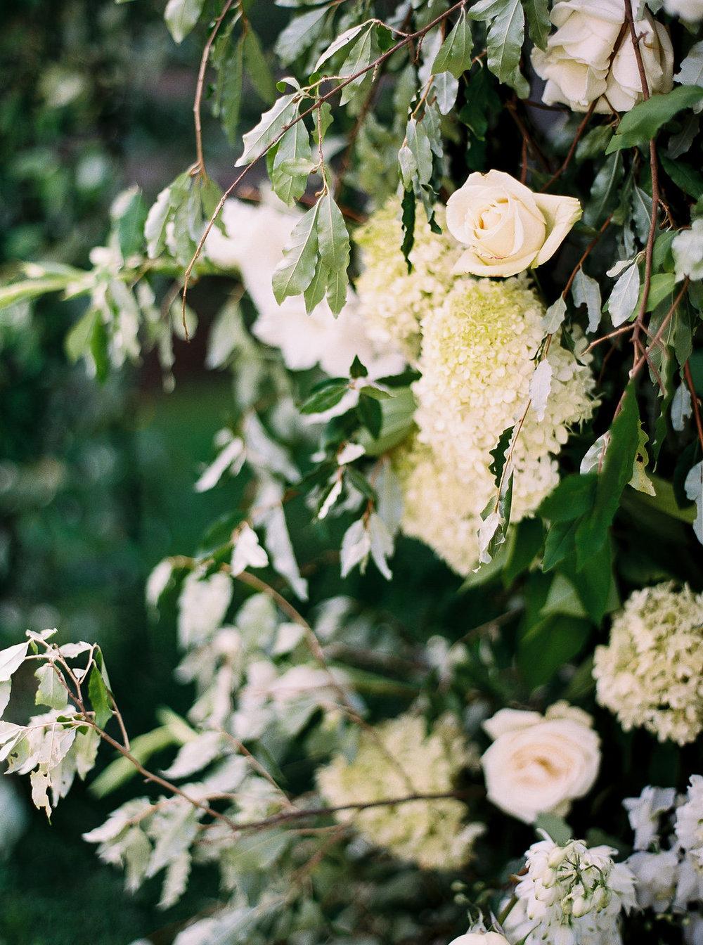 Fern Croft_OrchardWedding_05.jpg
