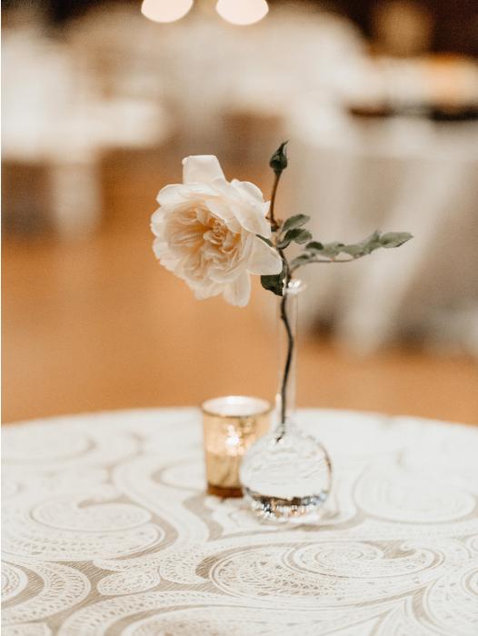 Garden Roses at Ashbury  ASHBURY HALL, BUFFALO NEW YORK