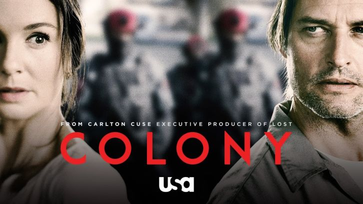colony4.jpg