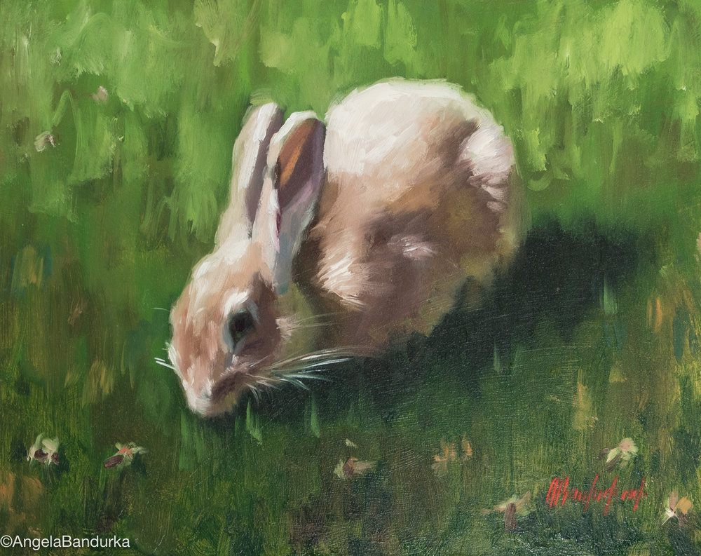 This little bunny will be the focus of our one-day painting session. I'll show you how to break it down into basic shapes and values, then how to layer the paint to create your own painting of it!