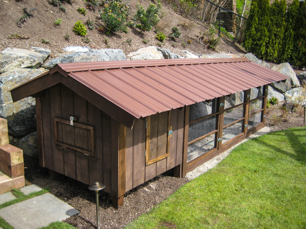 Custom Chicken Coop_Seattle Urban Farm Co.