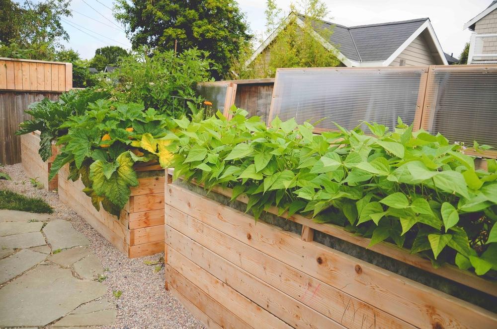 Raised Garden Bed Ideas Vegetables. Raised Garden Bed Designs Unique ...