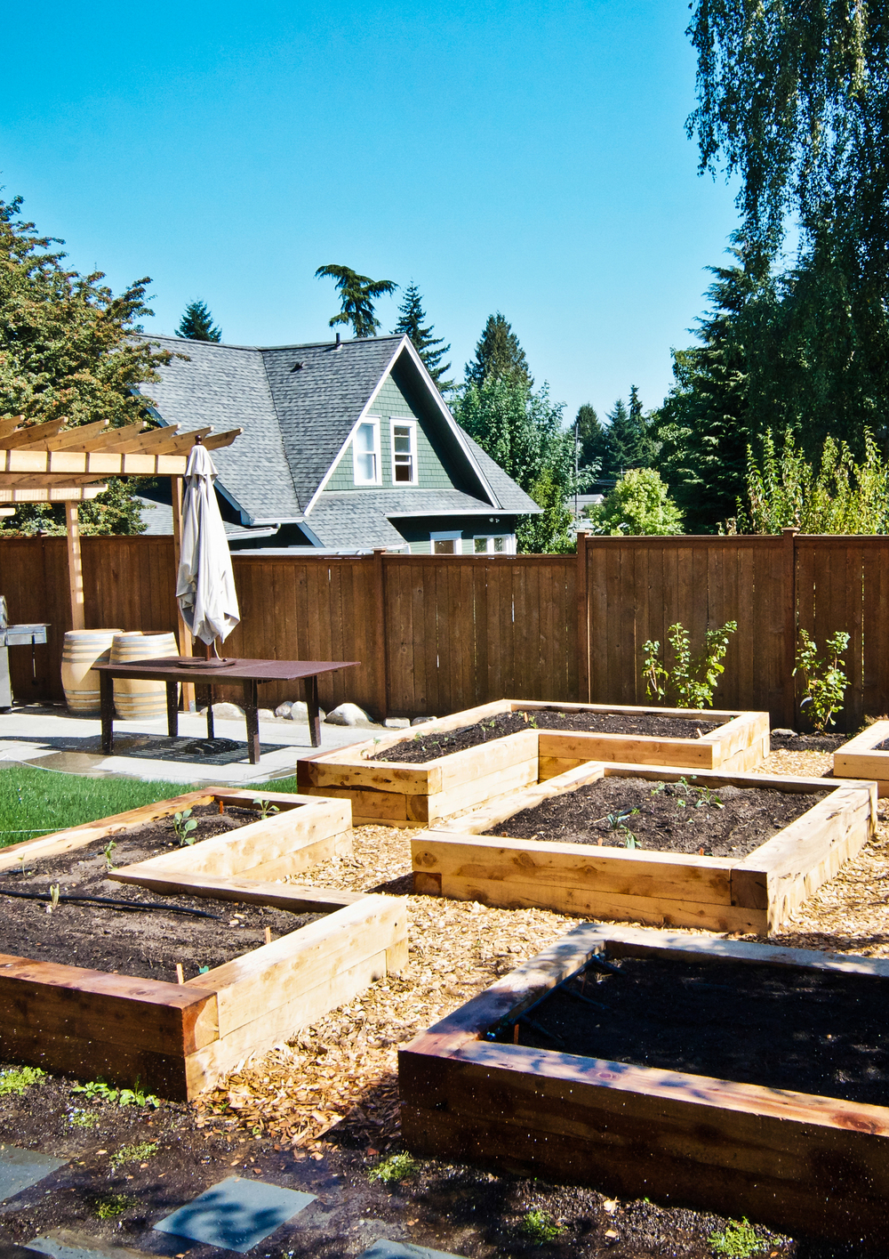 South Seattle Edible Landscape_Seattle Urban Farm Company_Raised Beds.jpg