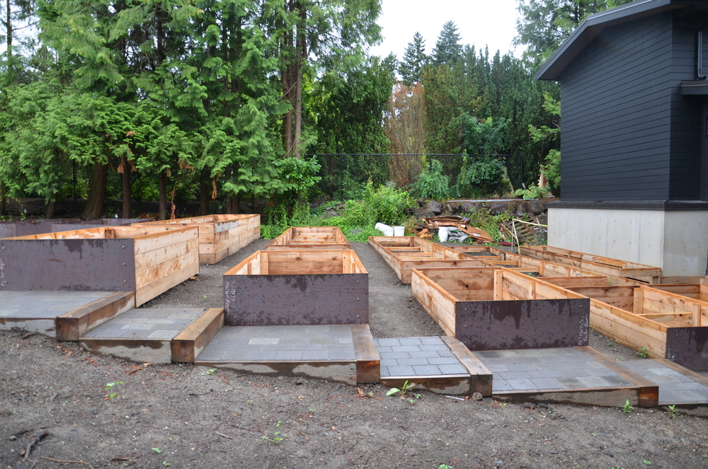 terraced raised beds 3
