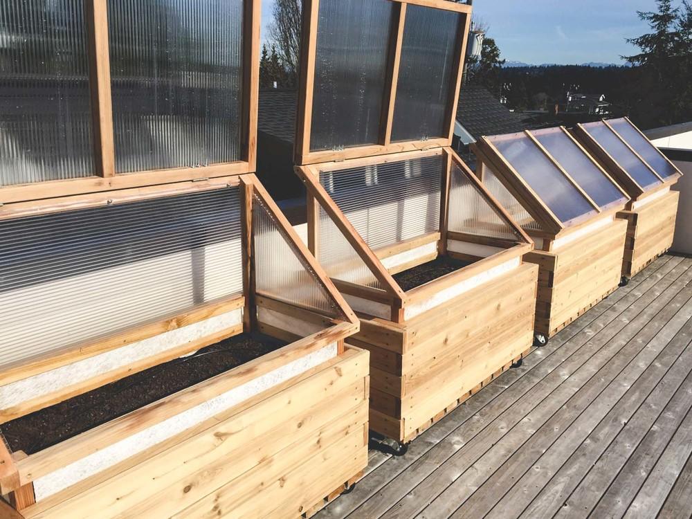 4 Season Rooftop_Vegetable Garden_Seattle Urban Farm Co.jpg