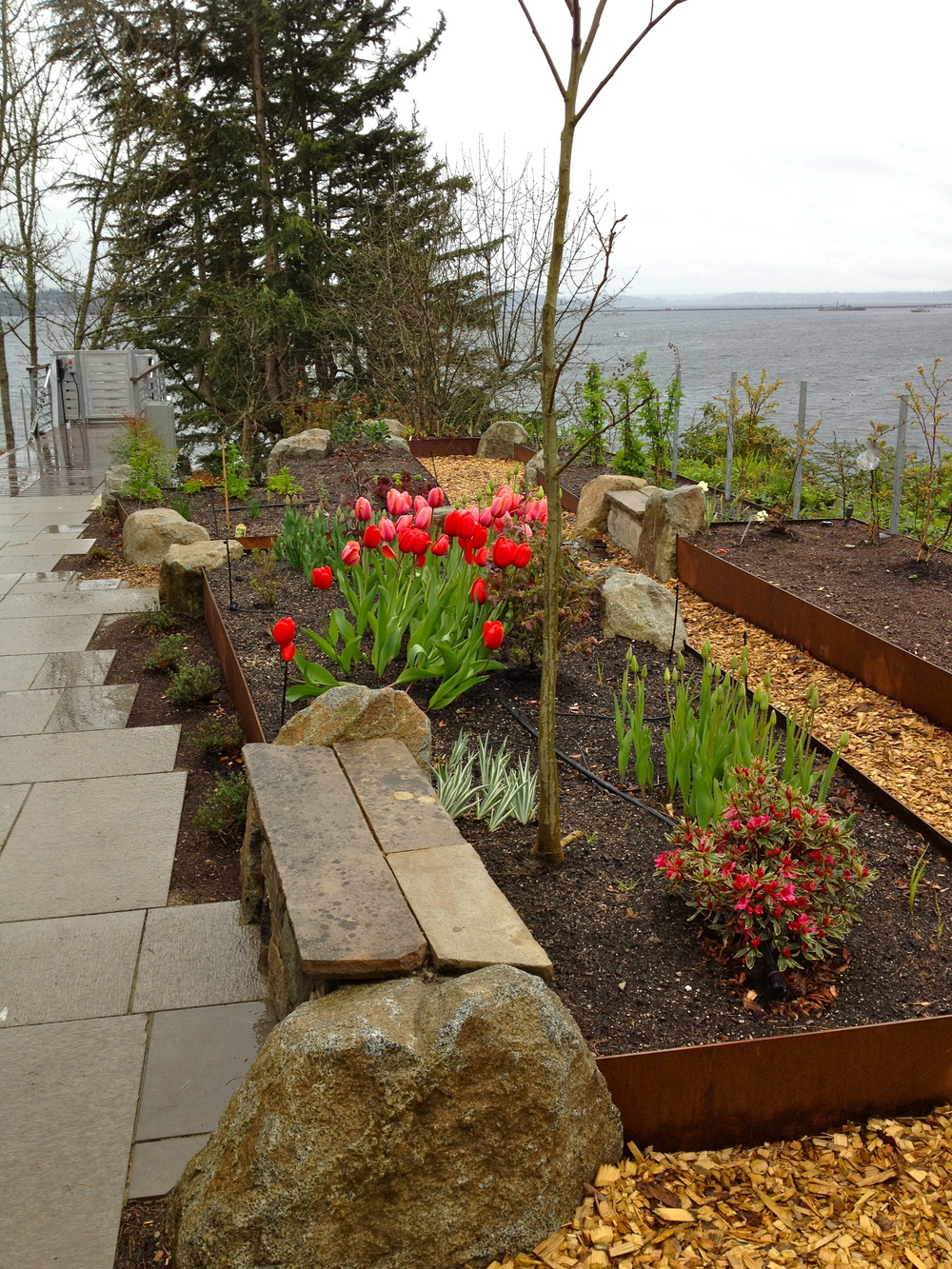 Raised Beds Steel.jpg