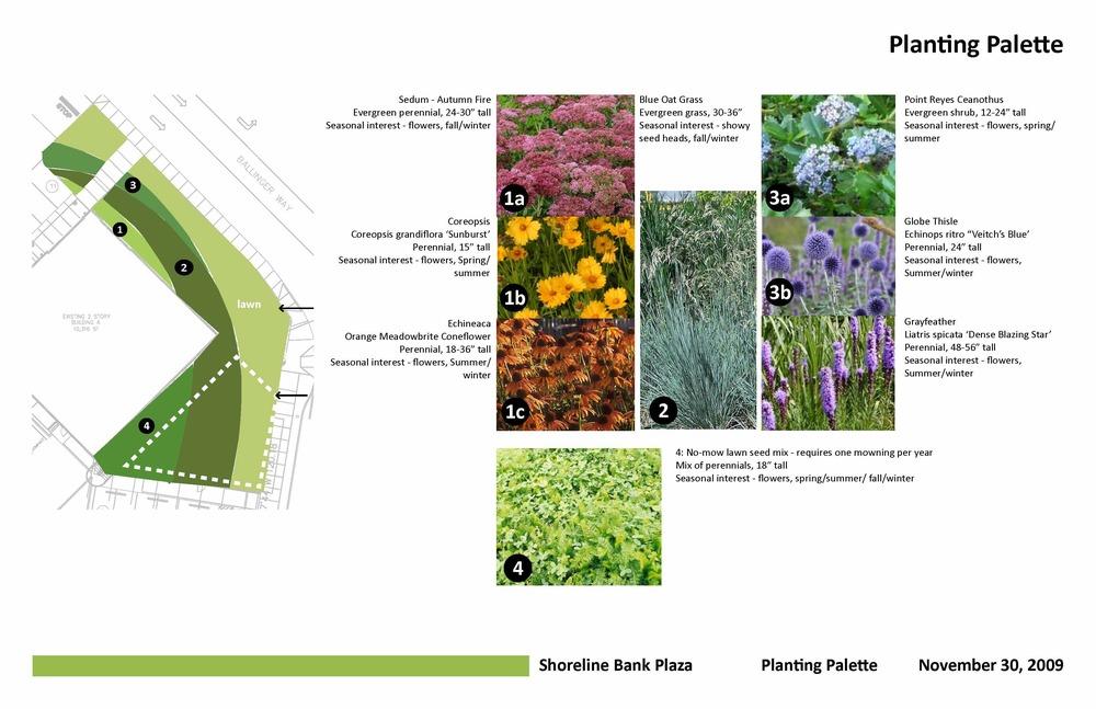 Planting Plan by Craig Skipton