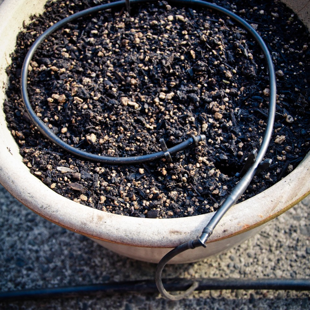 1/4 inch emitter tubing in a pot