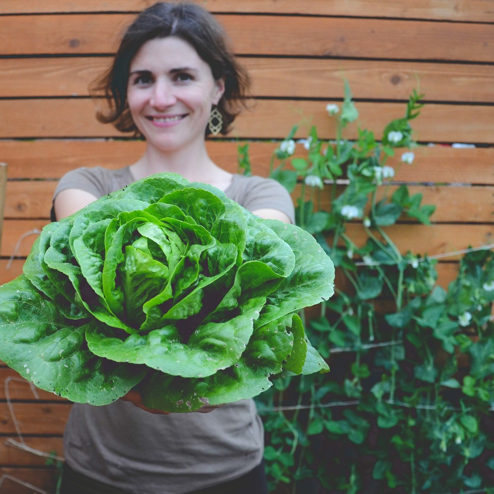 Hilary Dahl_Seattle Urban Farm Co.