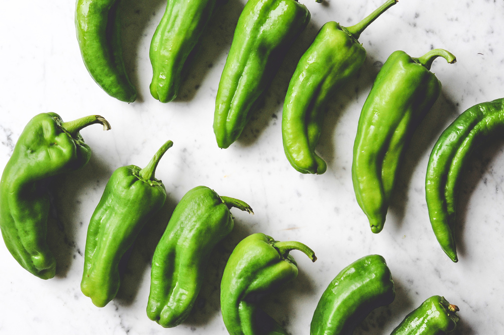 Anaheim Peppers_Seattle Urban Farm Co.