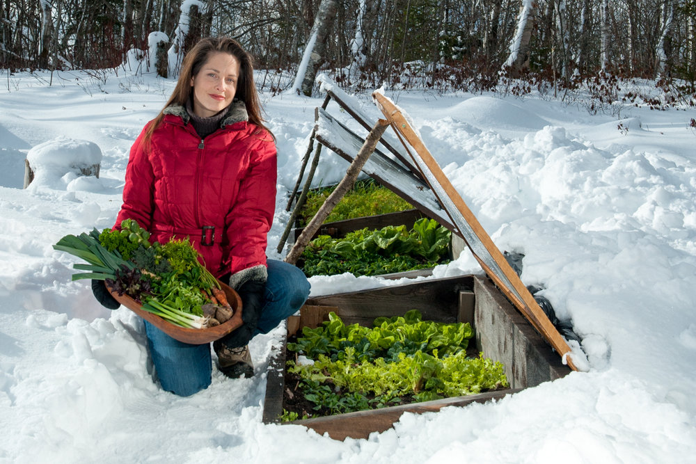 Photo from The Year Round Vegetable Gardener, taken by Joseph DeSciose