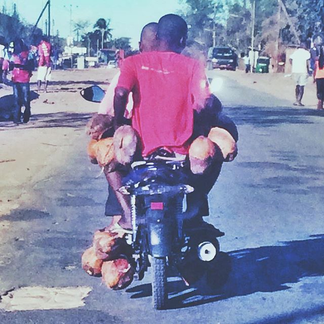 Only in Mozambique 🌴#crossconnectionoutreach #cco #coconutstogo