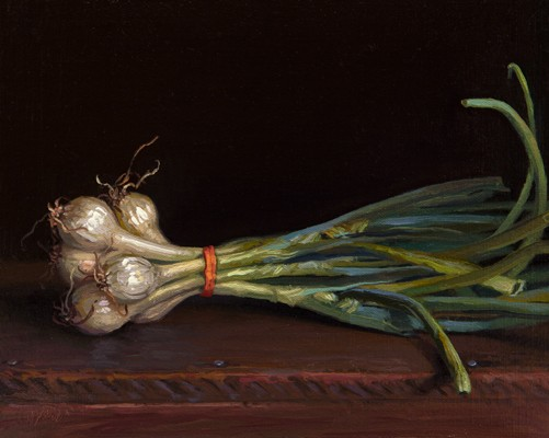 Spring Onions from Red Earth Farm, by Abbey Ryan