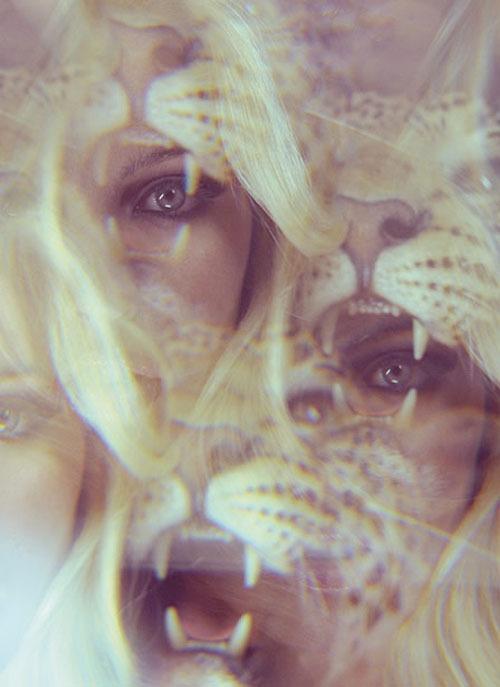 tumblr_l7hqosnKiD1qd0c4fo1_500.jpg