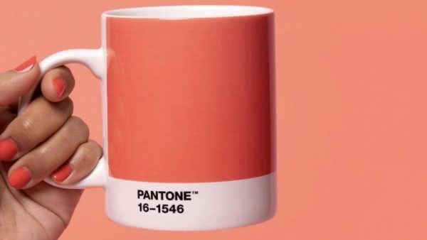Move over Ultra Violet 18-3838 - 2018, there's a new color in town. Pantone have announced that Living Coral 16-1546 is it's 2019 Color Of The Year.