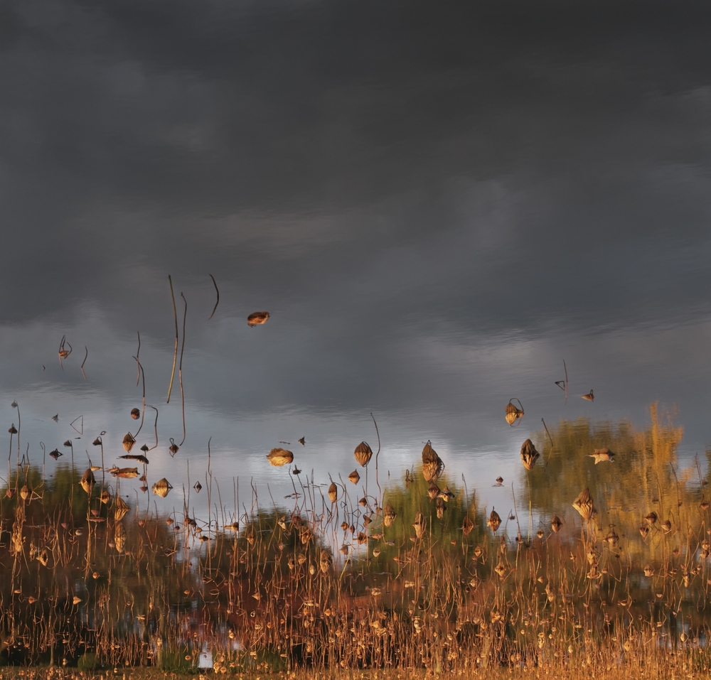 Ori Gersht,  Floating World, Floating Sky 01 , 2016, archival pigment print, 49 1/4 x 47 1/4 inches, edition of 6