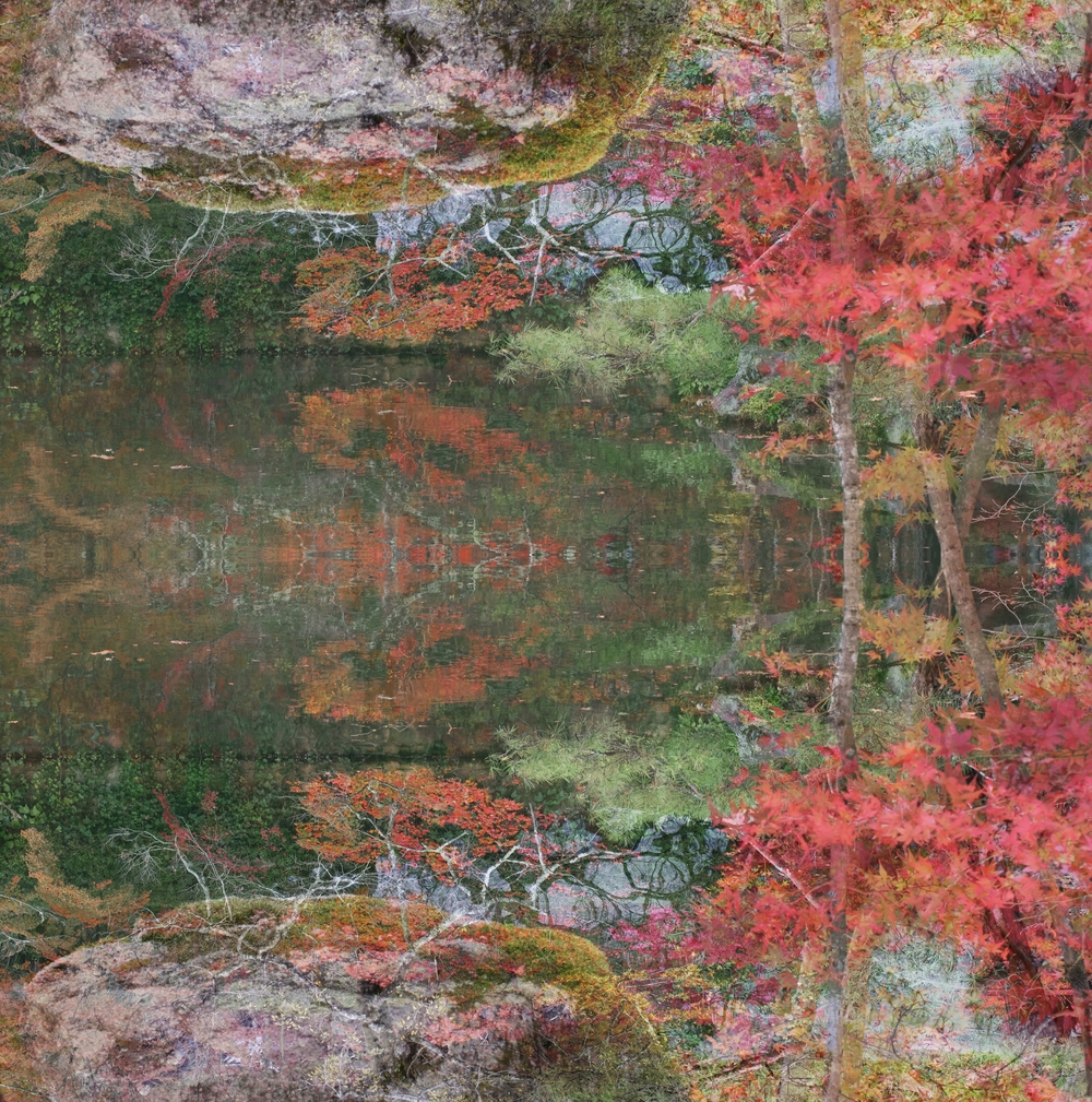 Ori Gersht,  Floating World 01,  2016, archival pigment print, 47 1/4 x 46 1/2 inches, edition of 6