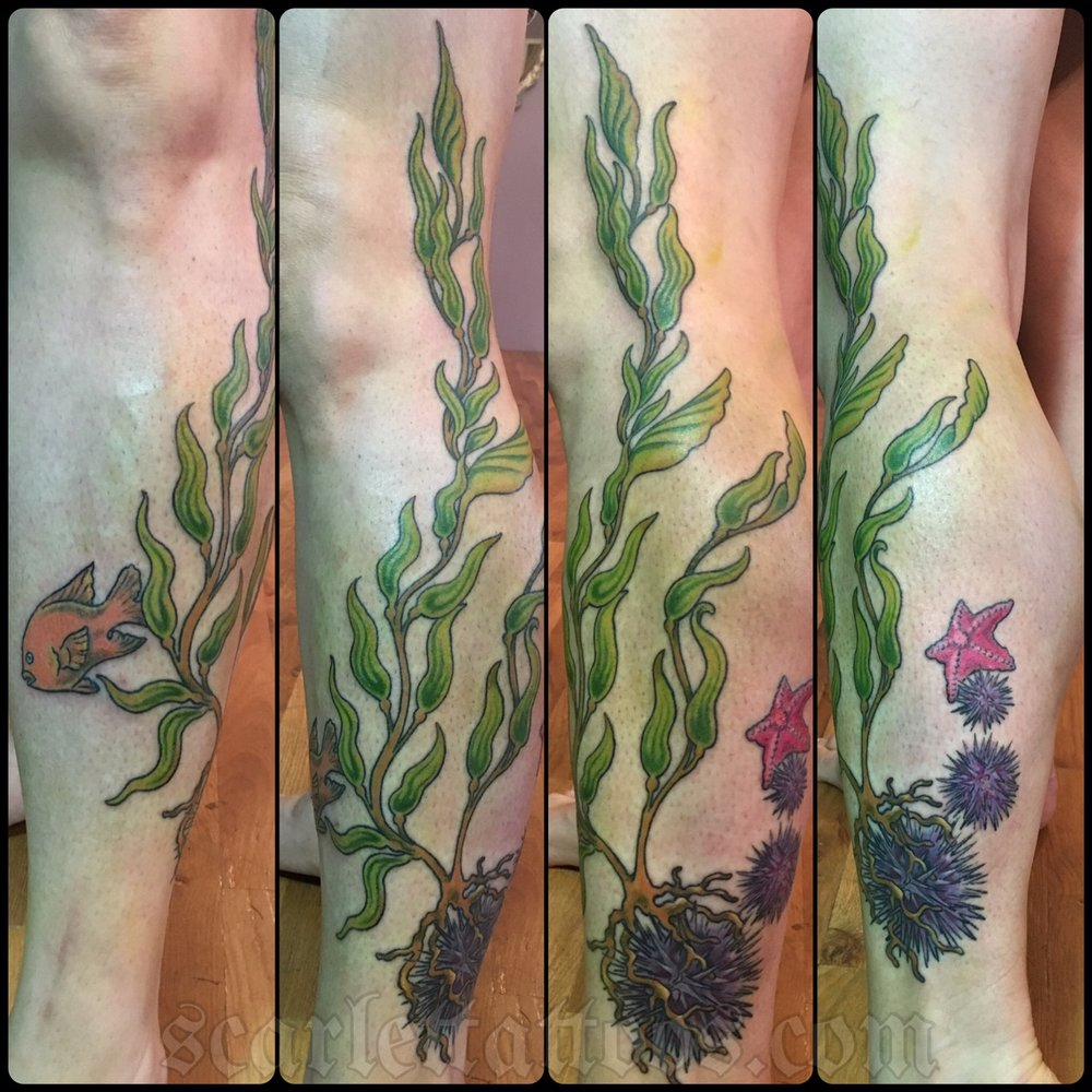Santa Barbara marine life tribute tattoo