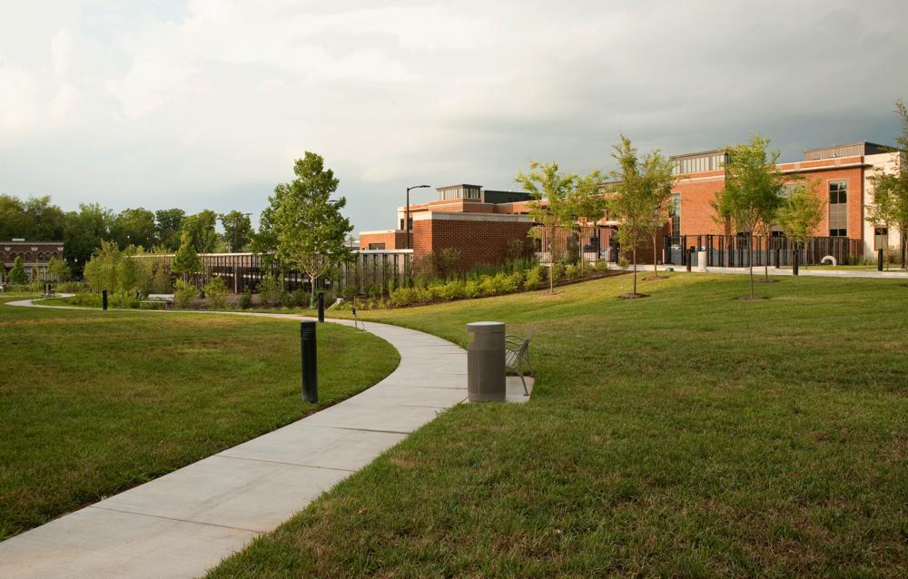 rear view of park like landscape