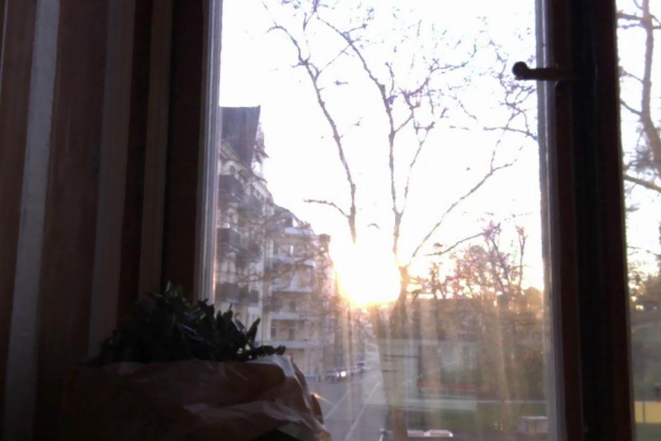 Vaknar varje morgon till soluppgång. Nu börjar jag bländas medan jag skriver.