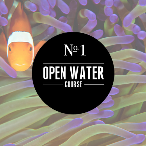 Learn about our Open Water scuba class!