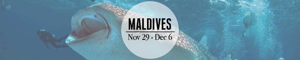 Maldives Banner