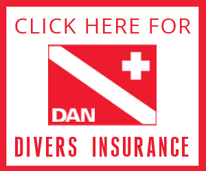 DAN_banner.jpg