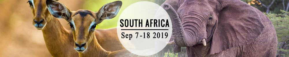 southafrica_banner.jpg