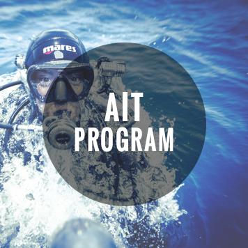 AIT_Badge.jpg