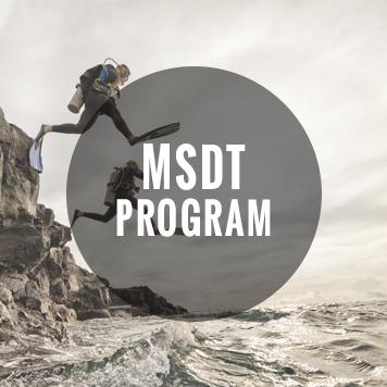 MSDT_Badge.jpg