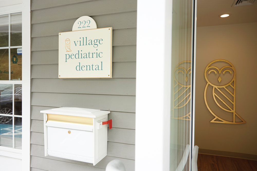 Village Pediatric Dental