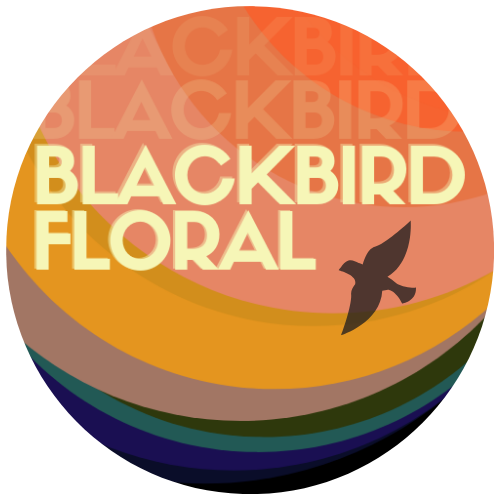 Blackbird Floral | Creative Austin Florist | Local same day flower delivery