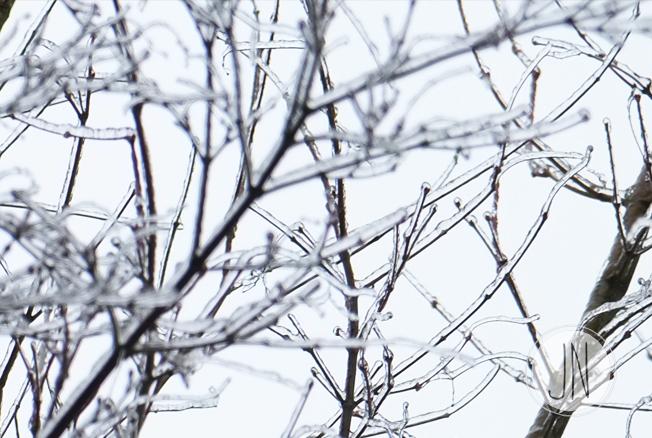 jnewlin_icestorm.jpg