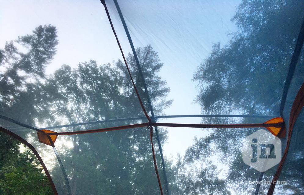 jennewlin_redwoods2017_tent.jpg
