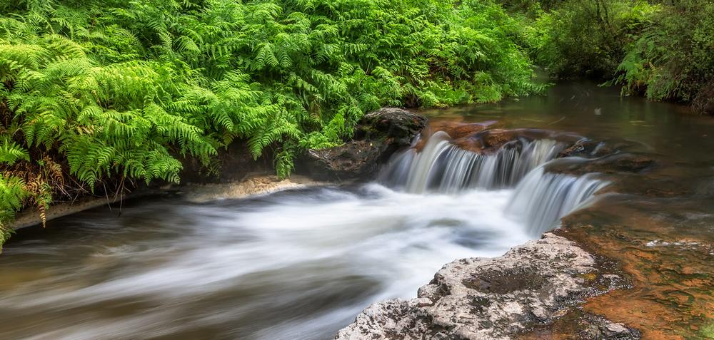 Kerosene-Creek.jpg